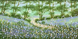 Bluebell Woodland Walk III by Mary Shaw - Original Painting on Board sized 12x24 inches. Available from Whitewall Galleries